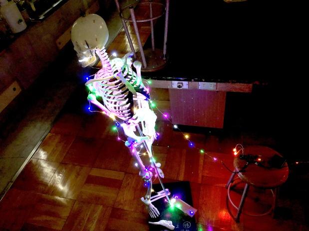 プログラミングで教室ジャック!?「理科チカ」で光らせよう人体骨格!